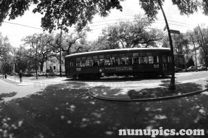 A Street Car in St. Charles neighborhood of New Orleans, Louisiana 2009
