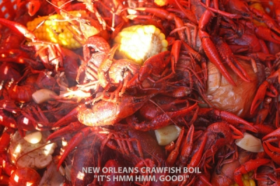 Crawfish Boil after New Orleans Jazz and Heritage Festival 2010